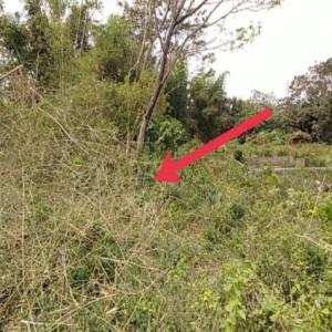 Seramnya Makam Prodeo, Tempat Pemakaman Mr X hingga Korban Mutilasi di Kota Malang