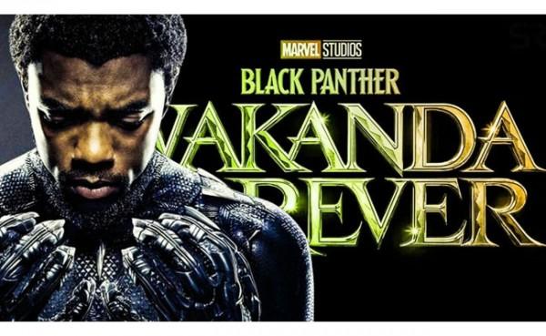Black Panther: Wakanda Forever (Foto: Dafunda)