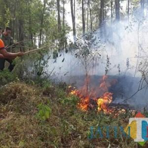 Antisipasi Kebakaran, BPBD Kota Batu Beri Imbauan Ini