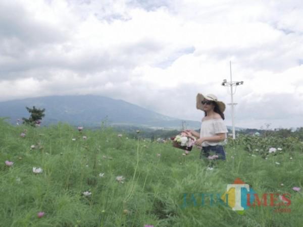 Wisatawan berswafoto di Batu Love Garden. (Foto: Irsya Richa/MalangTIMES)