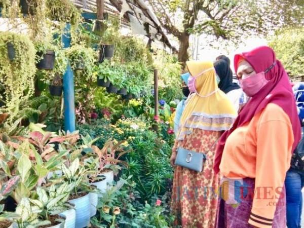 Pengunjung saat mellihat tanaman di kawasan Jalan Bukti Berbunga, Desa Sidomulyo, Kecamatan Batu. (Foto: Irsya Richa/MalangTIMES)