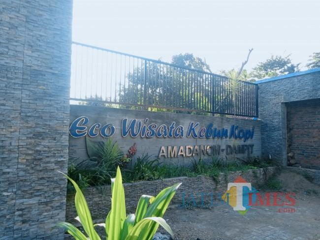 Eco Wisata Kebun Kopi Amadanom Dampit. (Foto: Fery/MalangTIMES)