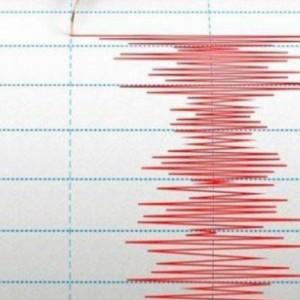 Diguncang Gempa, Belasan Rumah dan Fasilitas Umum di Blitar  Dilaporkan Rusak