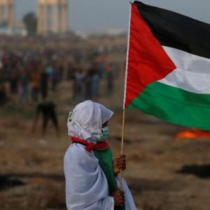 Kondisi Terkini Gaza Palestina, Tampak Tenang Setelah Genjatan Senjata untuk Akhiri Konflik
