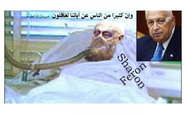 Mantan PM Israel Ariel Sharon (Foto: Billy Info)