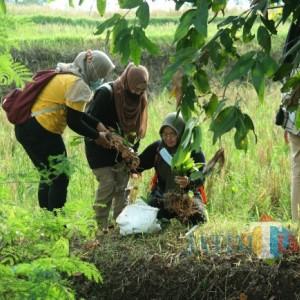 Lestarikan Aliran Sungai Desa Kasemek, Green Nusantara Tanam Pohon hingga Tebar Benih Ikan
