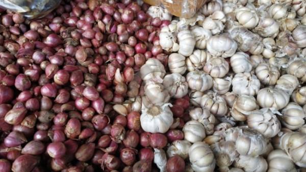 Bawang merah dan bawang putih. (daracoid)