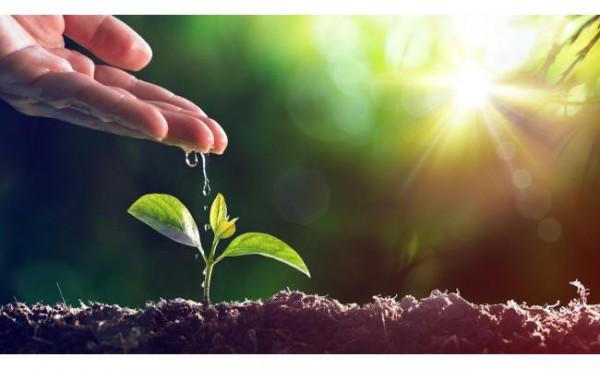 Hari Lingkungan Hidup Sedunia (Foto: British Council)