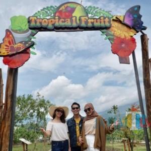 Angka Kunjungan Wisata di Kota Batu Capai 803.554 Wisatawan