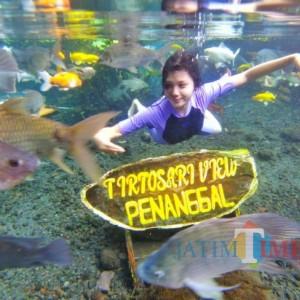 Tirtosari View Lumajang Sediakan Photo Spot Under Water Keren