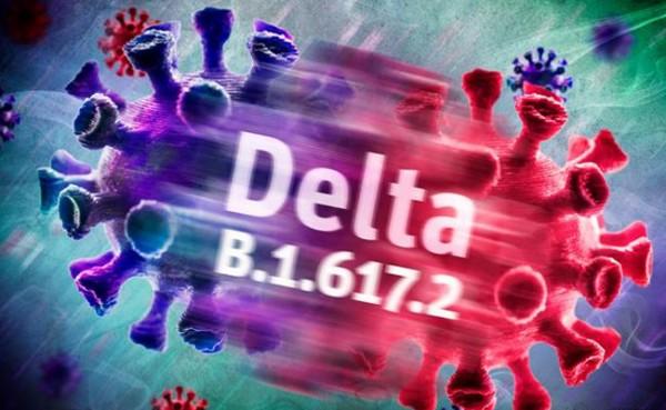 Varian Delta (Foto: DW)