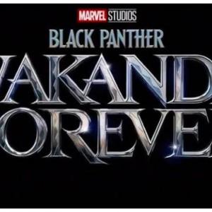 Tanpa Chadwick Boseman, Black Panther: Wakanda Forever Mulai Diproduksi