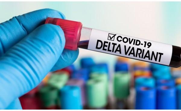 Covid-19 varian Delta (Foto: MSN)