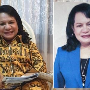 Mengenal Rosaline Irene Rumaseuw, Wasekjen PAN yang Minta Pemerintah Bikin RS Khusus Kalangan Pejabat