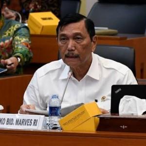IDI Patahkan Klaim Luhut, Sebut Covid-19 di Indonesia Belum Terkendali