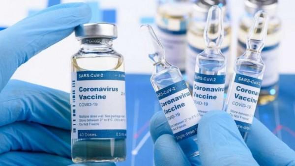 Ilustrasi vaksinasi pelajar (Ist)