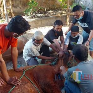 Ingin Cepat Distribusikan Daging, Musala Al-Moedjadi di Malang Sembelih Hewan Kurban Sendiri