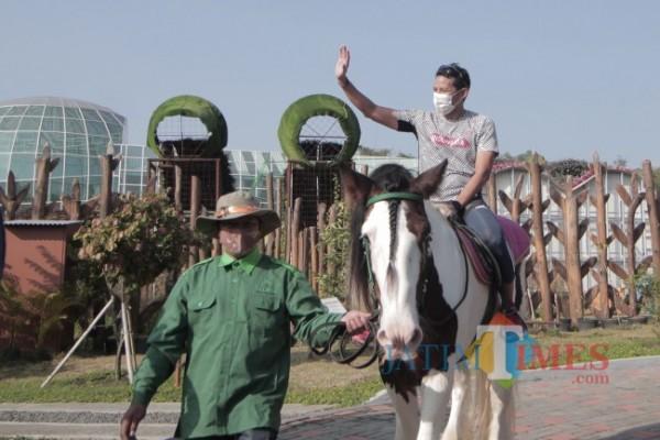 Menteri Pariwisata dan Ekonomi Kreatif Sandiaga Uno saat menaiki kuda di Batu Love Garden beberapa saat lalu.