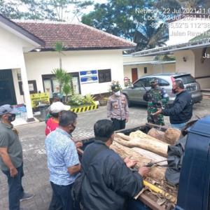 Ilegal Logging di Kabupaten Malang Berhasil Digagalkan