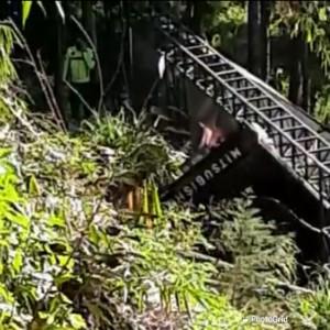 Angkut Daging, Pikap Masuk Jurang 25 Meter di Kota Batu