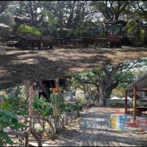 Dampak PPKM Darurat, Kafe di Kota Madiun Sekarat