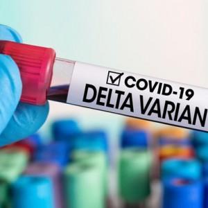 Sebab Virus Covid-19 Varian Delta Lebih Menular, Sempat Disinggung Jokowi