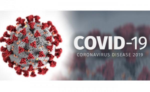 Covid-19 (Foto: Infeksi Emerging Kementerian Kesehatan RI)