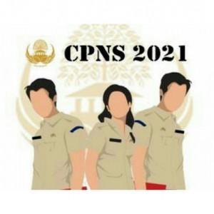 Diumumkan Hari Ini, Begini Cara Cek Hasil Seleksi Administrasi CPNS 2021