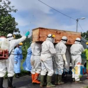Kasus Kematian Akibat Covid-19 di Kabupaten Blitar Tertinggi se-Jawa Timur