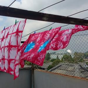 TIM PMM UMM Gelar Pelatihan Batik Shibori Bersama Karang Taruna Desa Pesanggrahan
