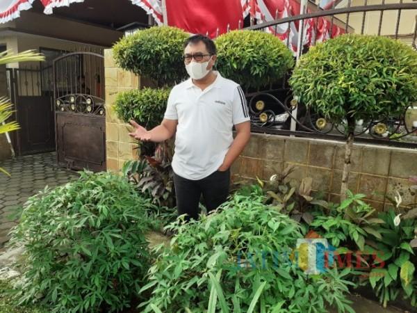 Wakil Wali Kota Malang Sofyan Edi Jarwoko saat menunjukkan tanaman ubi cilembu di halaman depan rumah dinasnya. (Arifina Cahyanti Firdausi/MalangTIMES).