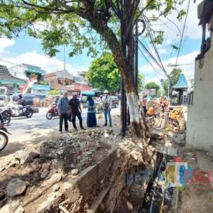 Tinjau Pohon yang Akan Dipotong untuk Pembangunan Gorong-Gorong, DLH Bakal Tanam Lagi