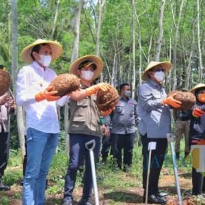 Dampingi Wamen Pertanian RI Panen Porang, Bupati Trenggalek Bakal Permudah Investor Pertanian