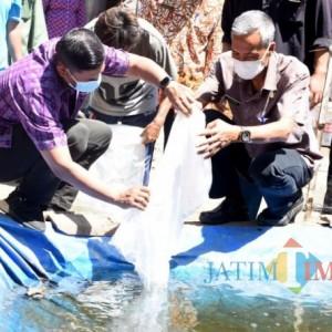 Tingkatkan Ekonomi Masyarakat, Wali Kota Kediri Serahkan Bantuan Benih Ikan Koi