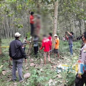 Pria di Tulungagung Ditemukan Tewas Gantung Diri di Pohon Jati Hanya Pakai CD Merah