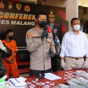 Tanam Ganja di Rumah, Pria Asal Lumajang Diciduk Polisi