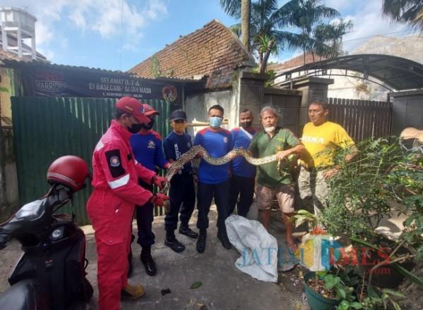Tim penyelematan dari UPT Pemadam Kebakaran Kota Malang usai mengevakuasi ular piton sepanjang tiga meter di belakang Balai Kota Malang, Jumat (3/9/2021). (Foto: Tubagus Achmad/JatimTIMES)