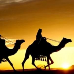 10 Hewan yang Dijamin Masuk Surga Beserta Amalannya untuk Kaum Muslim