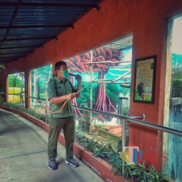 Petugas sedang melakukan penyemprotan desinfektan di Maharani Zoo dan Goa Paciran (foto: Humas Maharani Zoo dan Goa for JatimTIMES)