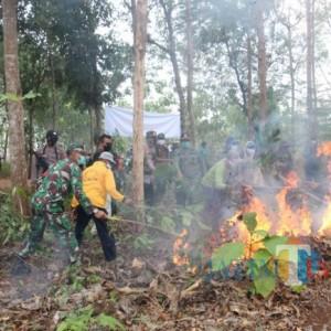 Perhutani KPH Parengan Simulasi Pencegahan Kebakaran di Kawasan Hutan