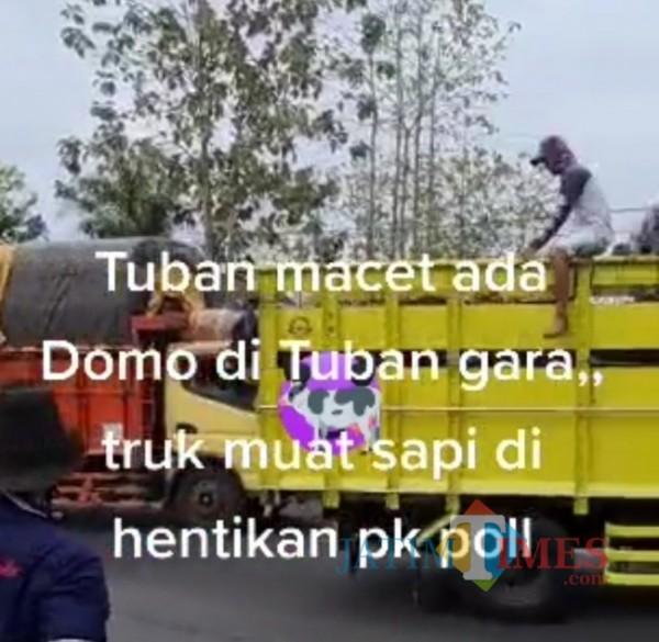 Penghadangan jalan raya oleh sekelompok pengemudi dan penumpang truk pengangkut hewan sapi di Kabupaten Tuban (13/09/2021) .(Foto Screenshot vidio tiktok/Jatim TIMES)