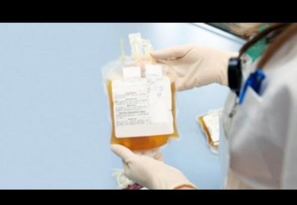 Ilustrasi plasma konvalesen. (Foto: iStock Photo/Choja).