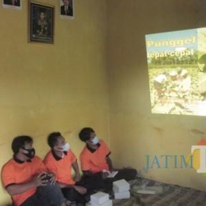 Dispertapa Pemkab Blitar Beri Pembekalan Pola Kemitraan dan Analisis Usaha Tani ke Petani Desa Ngrejo