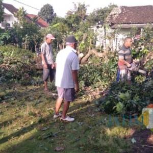 Diterjang Angin Puting Beliung, 36 Rumah Warga Banyuwangi Rusak