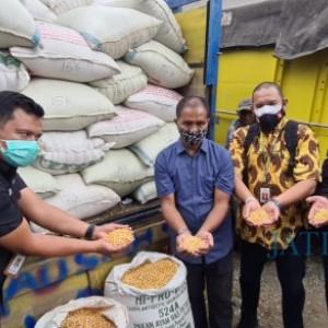 Peternak Ayam Petelur Asal Blitar yang Demo Presiden Jokowi Dapat Bantuan Jagung