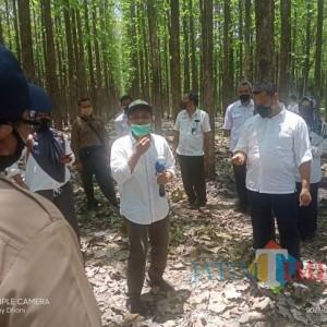 Perhutani Ngawi Terima Kunjungan Lapangan Tim Peneliti UGM