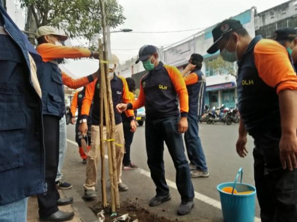 Suasana penanaman pohon tabebuya oleh DLH Kota Malang. (foto: DLH Kota Malang for MalangTIMES)