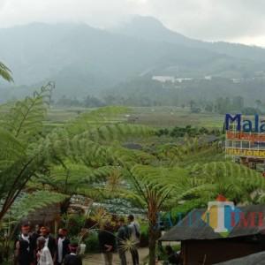 Sejarah Nama Malang sebelum Ada Wacana Pergantian Nama Kabupaten Malang
