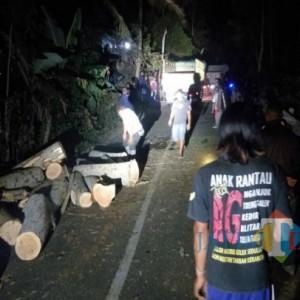 Truk Angkut Sengon Terguling di Kali Jirak Pucanglaban, Diduga Sopir Kurang Kontrol
