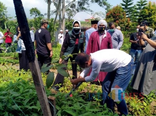 Penanaman pohon dilakukan oleh Kepala Dinas Lingkungan Hidup Aires Setiawan di Kota Batu, Minggu (26/9/2021). (Foto: Irsya Richa/MalangTIMES)